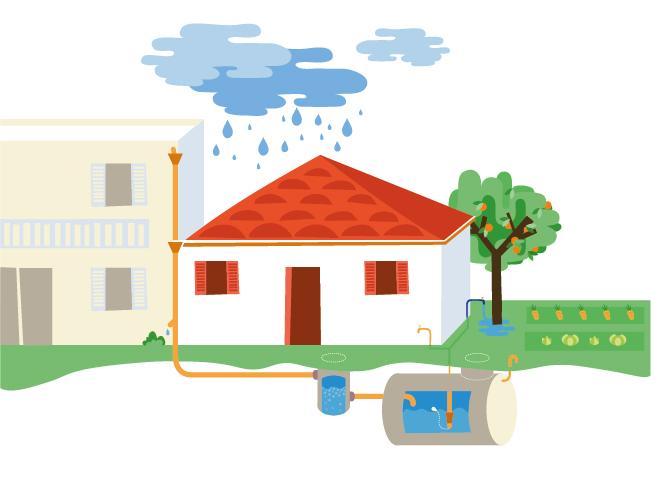 rainwater-harvesting quiz-hotspot